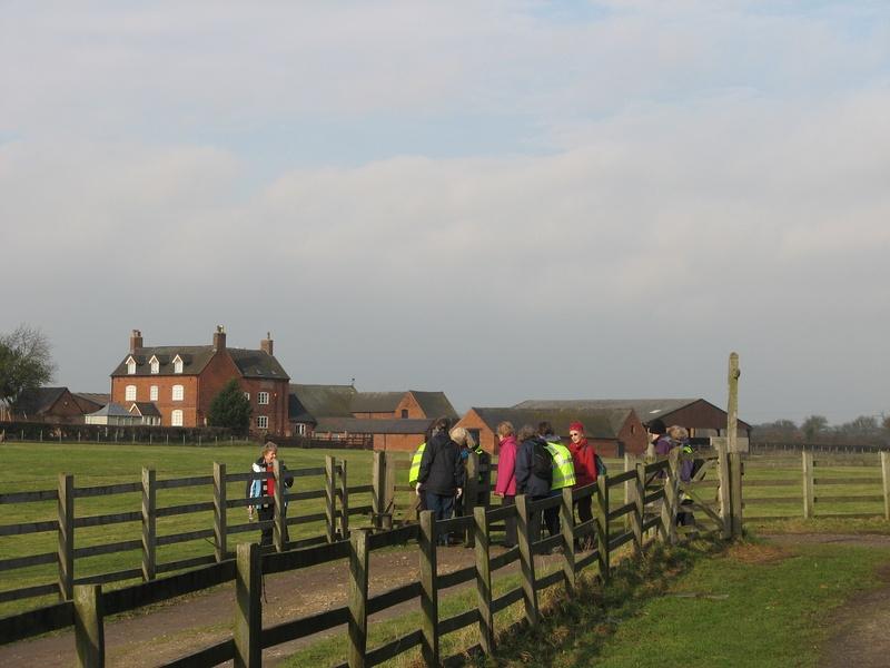 February Walk 1